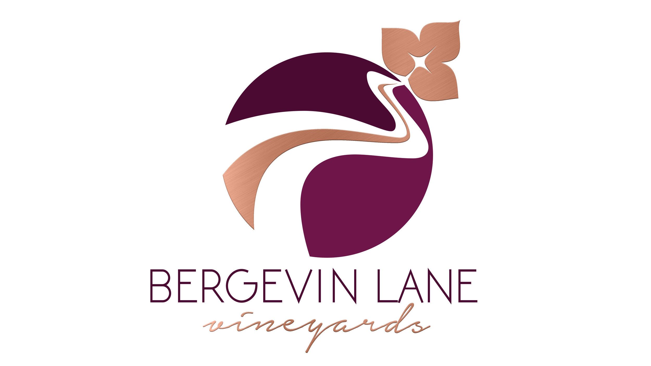 Bergevin_LogoMetallicVIDEO.jpg