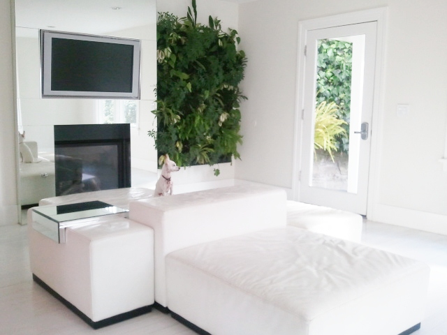Bea Johnson Living Room | The Honest Home Podcast | Zero Waste Home