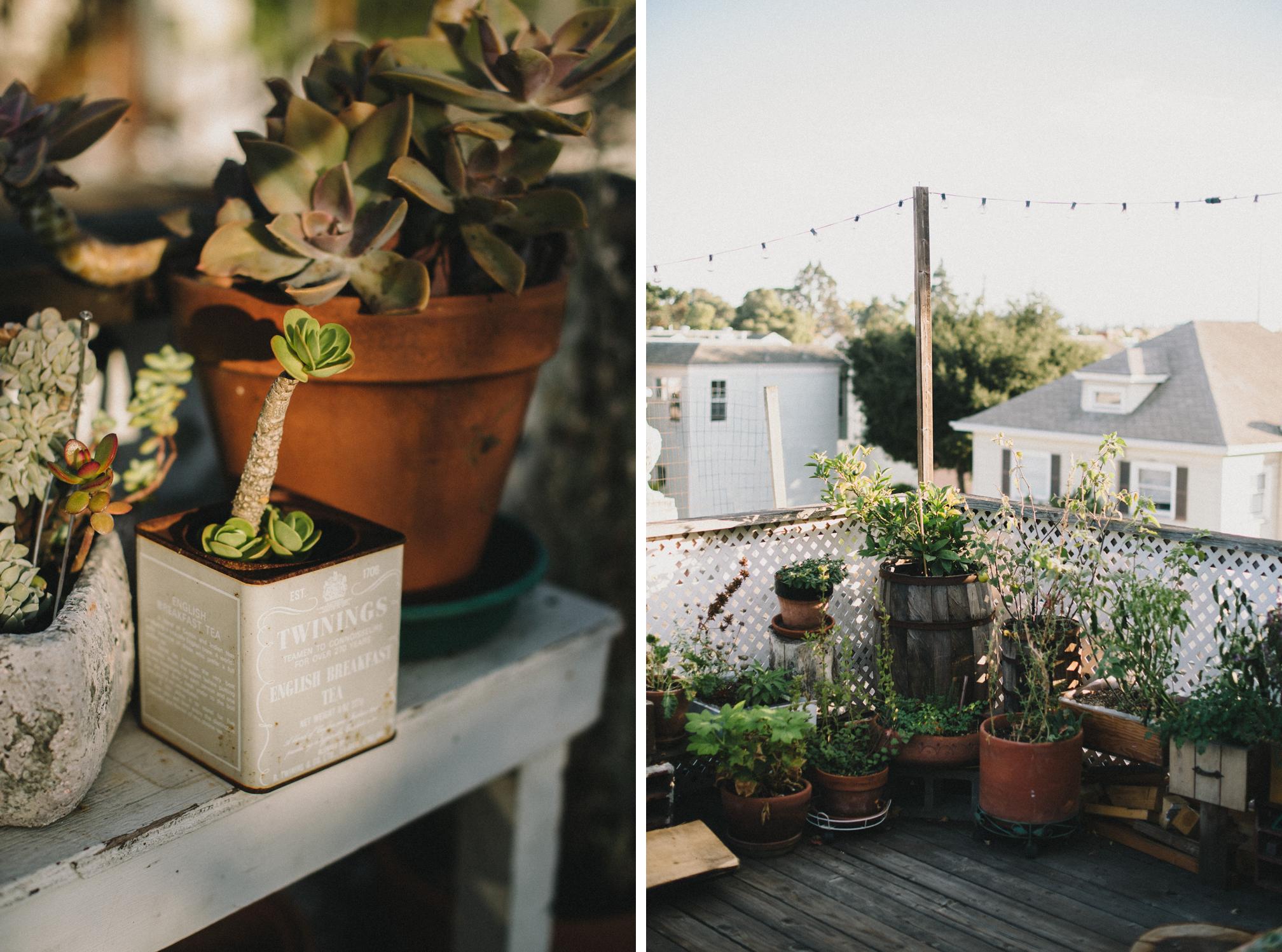 Rooftop Garden  | The Honest Home | Jared Tharp | Loveridge Photography