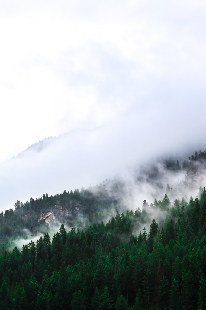 The Noisy Plume, Mountains | The Honest Home Podcast