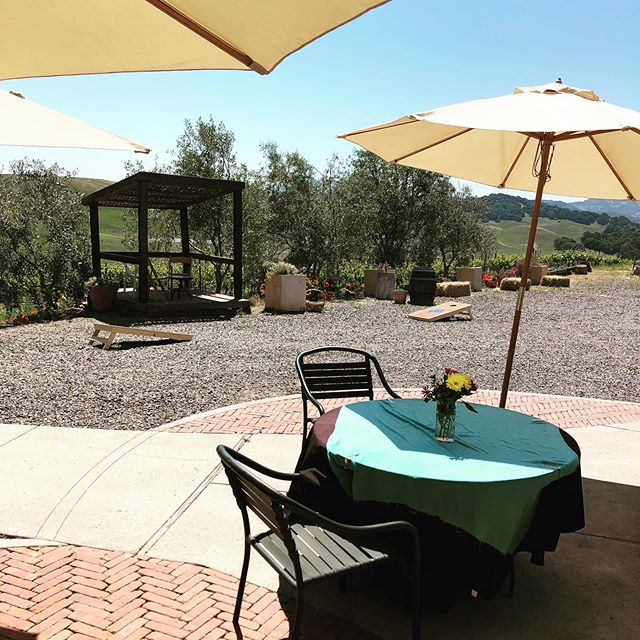 Who is looking for a beautiful place to play Corn Hole? Azari Vineyards has you covered. Come by for a tasting, pizza, and some tipsy Corn Hole. We also have jumbo Janga and jumbo Connect Four. Make an appointment online at azarivineyards.com. #games #boardgames #janga #connectfour #cornhole #wine #winery #airbnb #winetasting #tastingroom #azari #azarivineyards