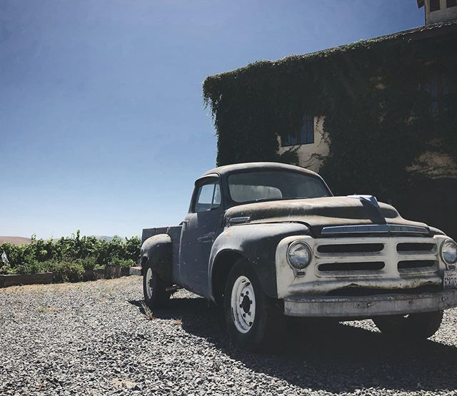 This 'ol Studebaker sure starts a lot of conversations amongst fathers and sons. Here at Azari we encompass a family vibe for after all this is a family estate vineyard and winery 💜 #love #nature #oldcar #studebaker #azari #vineyards #picoftheday #azariwinery