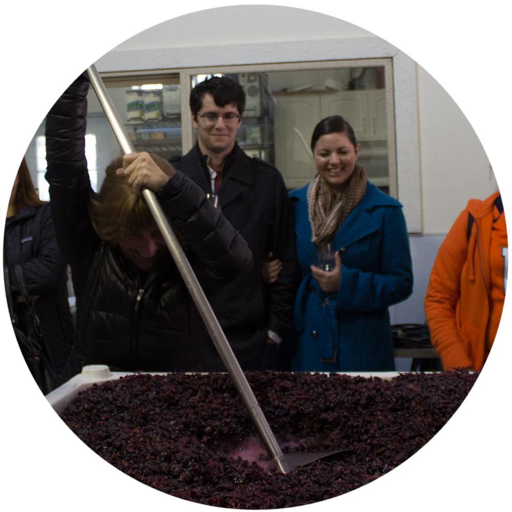 winery-tour-5.jpg