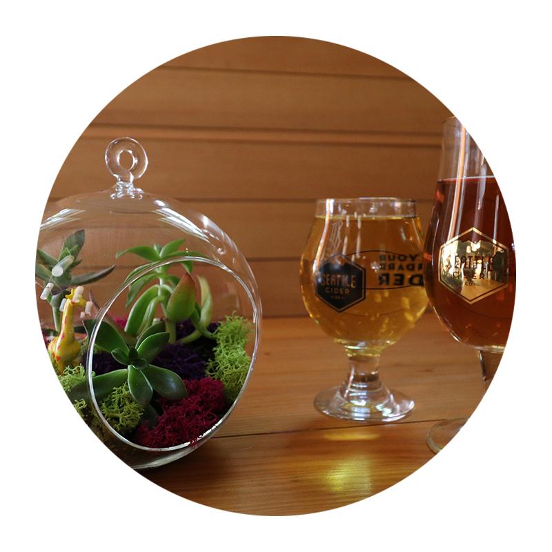 Terrarium-Cider-2.jpg