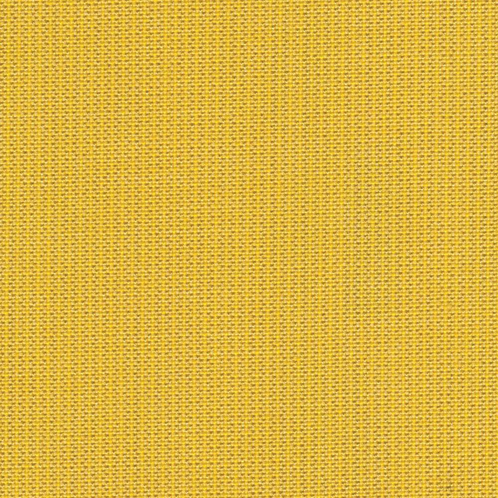 Daffodil 48024