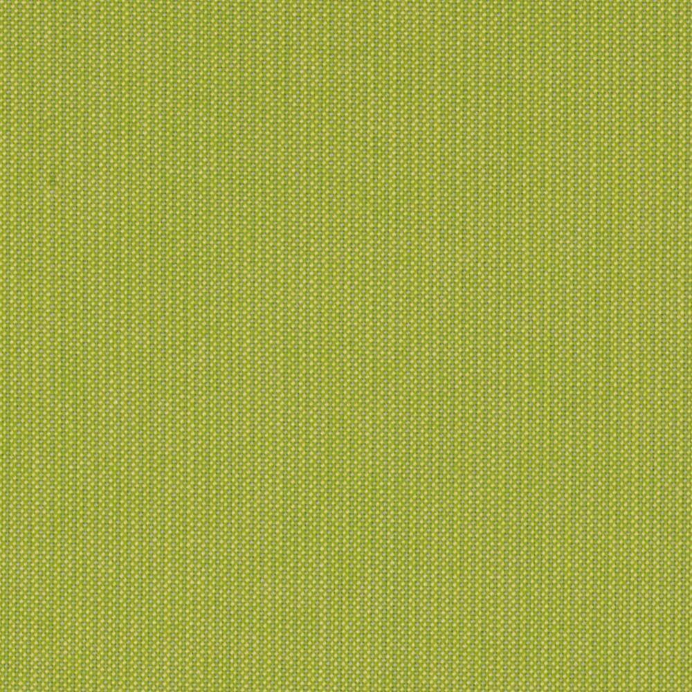 Kiwi 48023