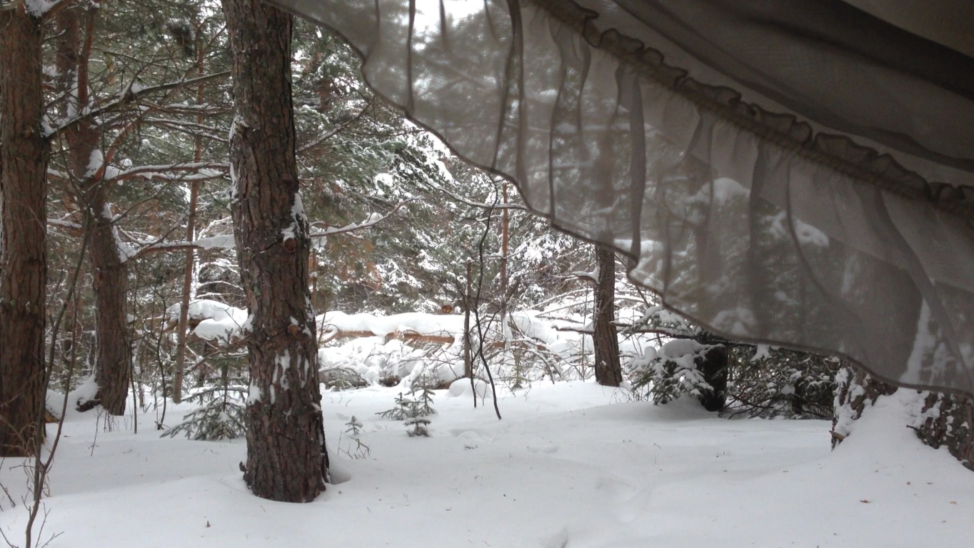 Bed Side Forest View Drape.jpg