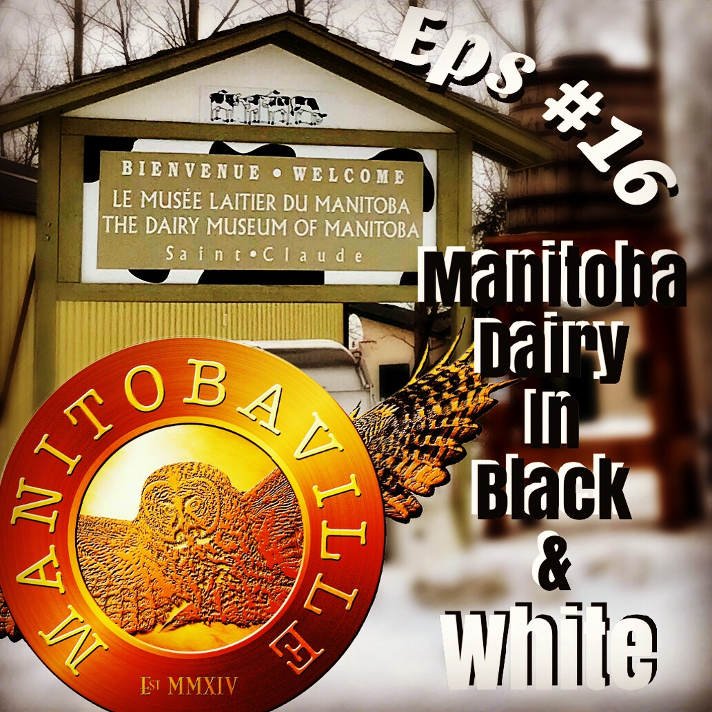 le musée laitier du manitoba the dairy museum manitobaville podcast milk history farm cows holstein.JPG