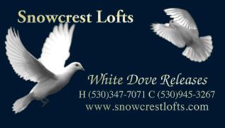 Redding Wedding Rentals Dove Release Snowcrest Lofts