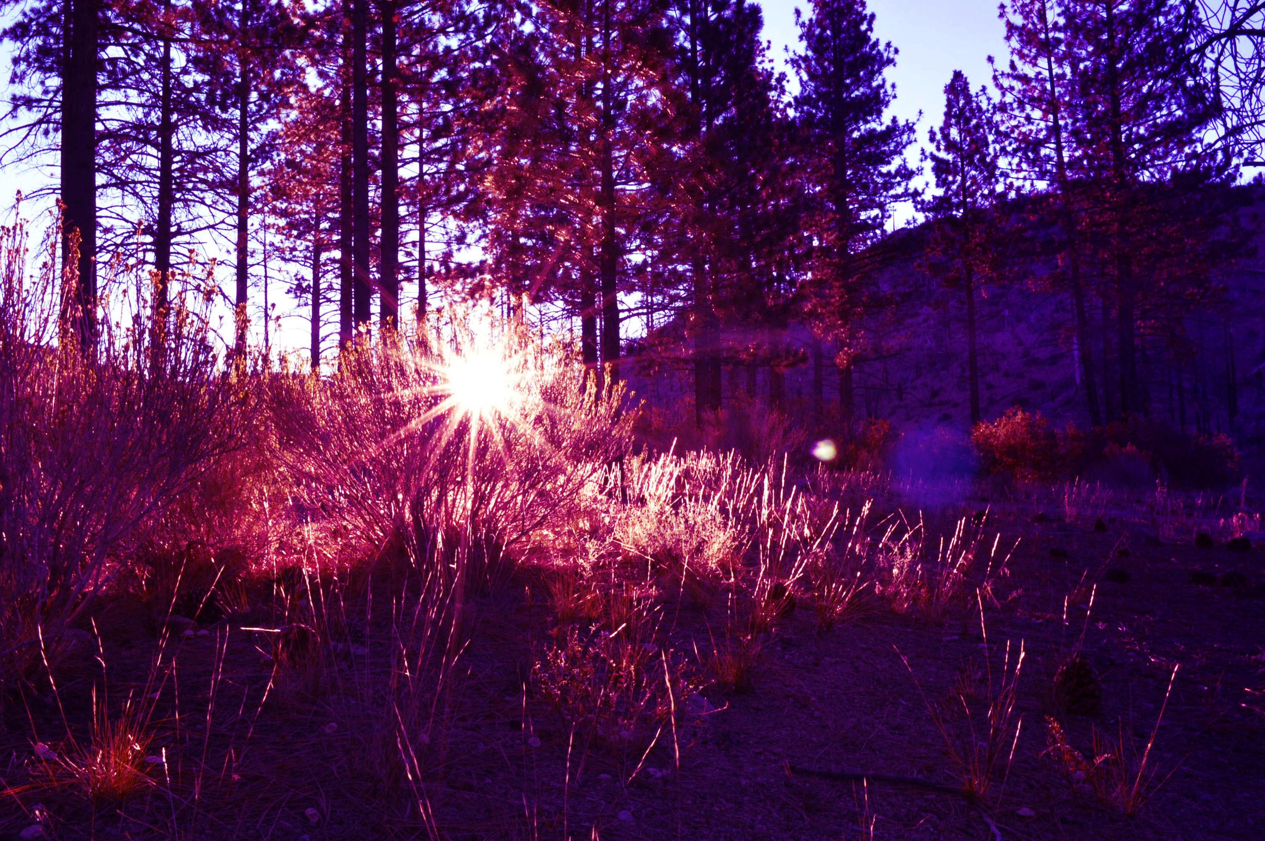 sunrise // blog-action