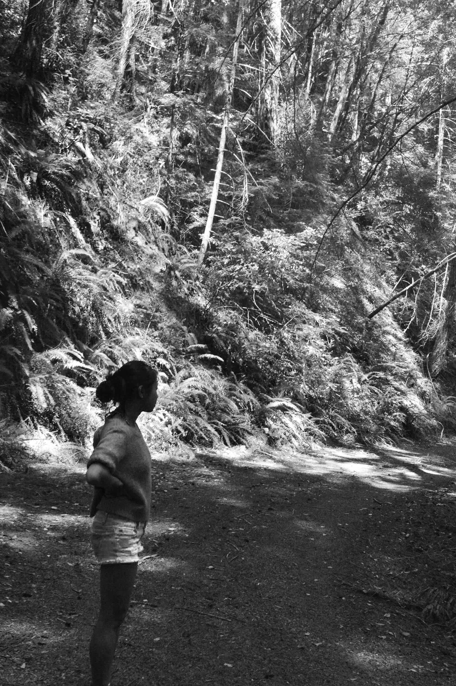 on the trail // blog-action // natalie kafader