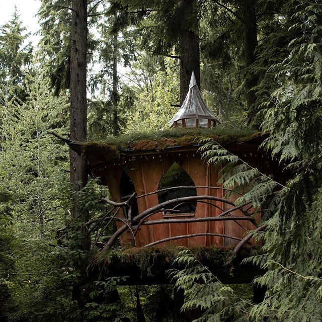 Would you stay in this little fairyland treehouse? . Just under an hour northeast of Seattle there is a group of treehouses you can rent out on Hip Camp. I had the pleasure of staying in one with a couple of my besties this past weekend. . We ate and drank and hiked and just hung out. When your friends are all spread out all over the country it's really nice to be able to get together and catch up every so often. . Do you have yearly meet up with your friends if you live in different places?