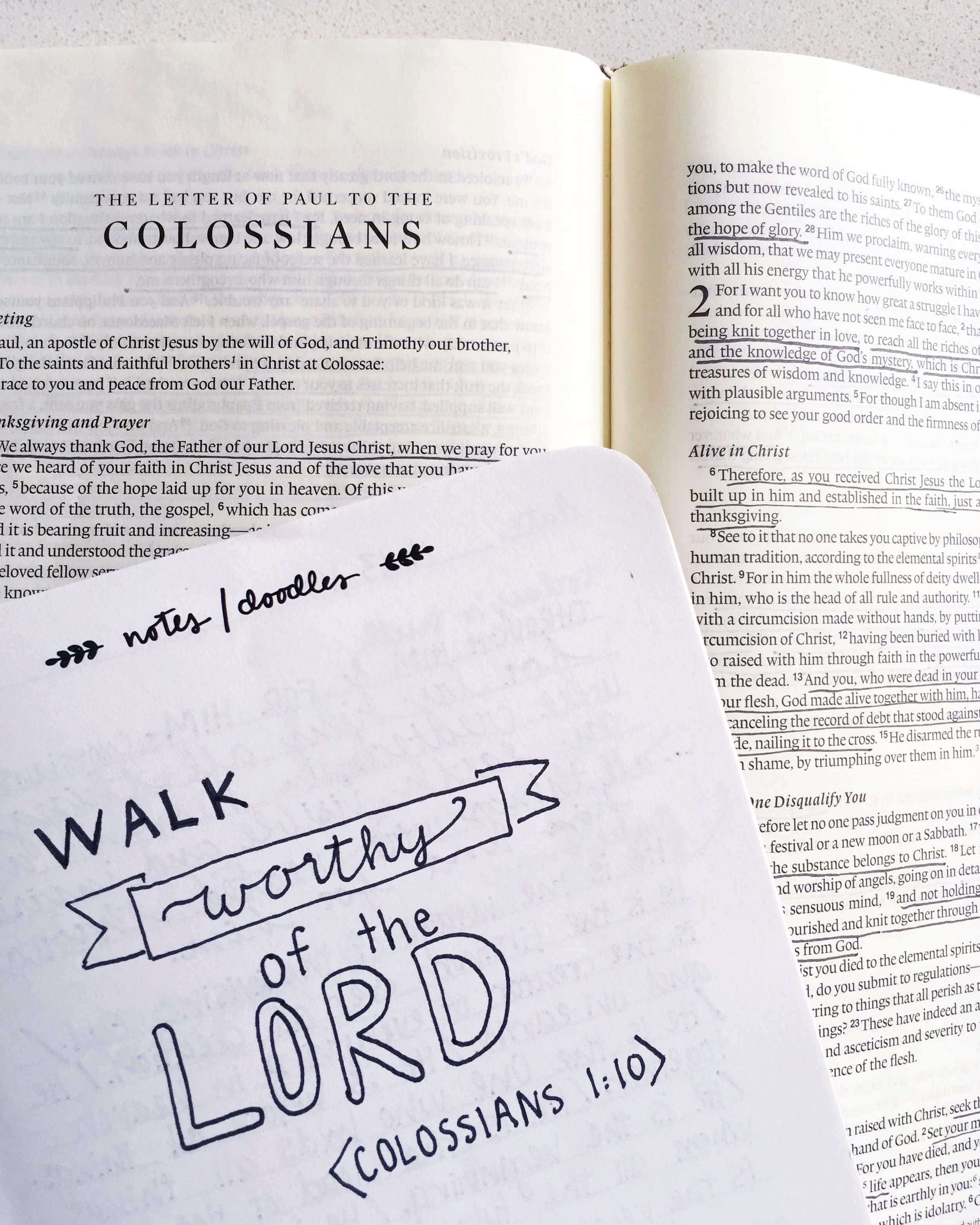 Dwell Deeply Doodle | Colossians 1:10 | By Susanna Zach