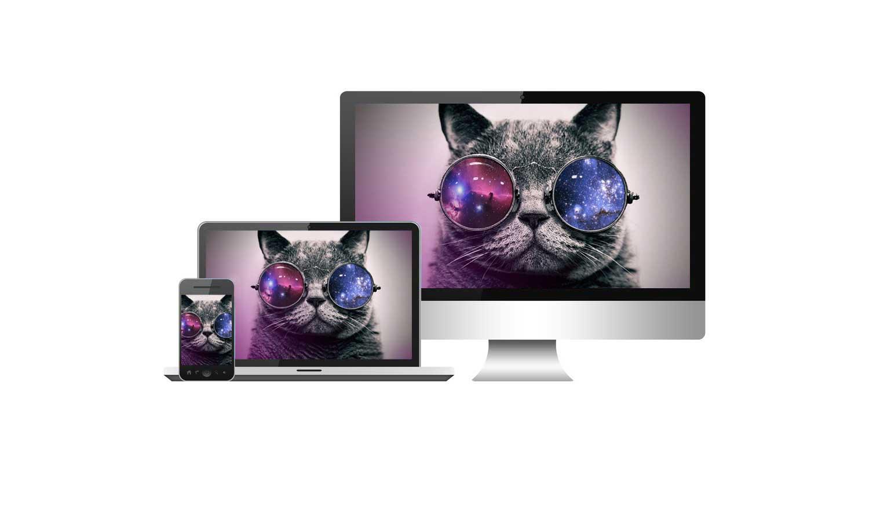 Brand Your Hobbies & Interests   Launch A Platform    Check Out Our Portfolio