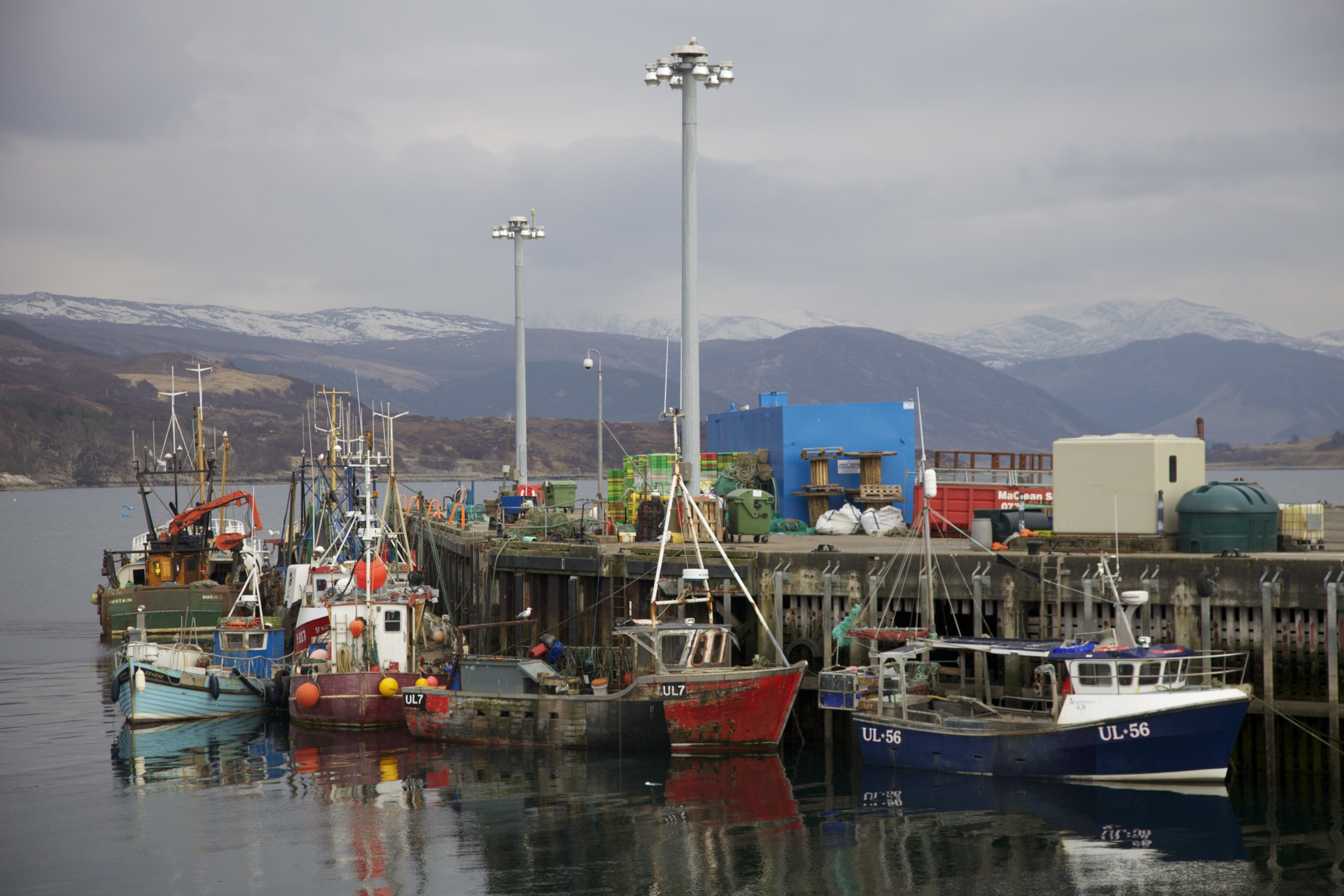 The harbor of Ullapool, Scotland, from which a lot of my maternal ancestors hail.  (Ullapool, Scotland.)