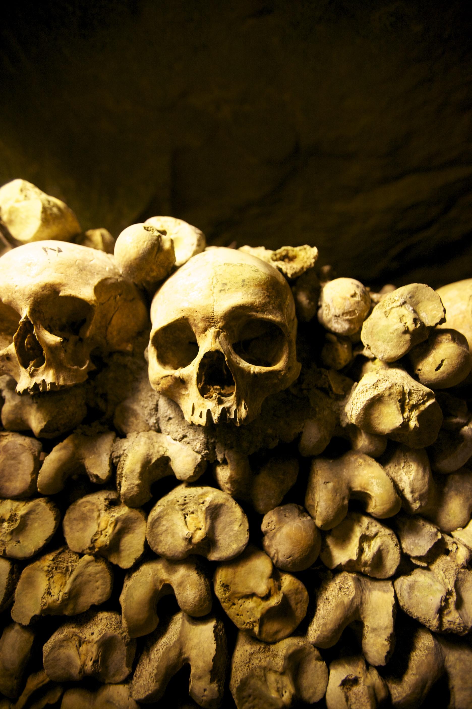 Skulls and bones in the catacombs.