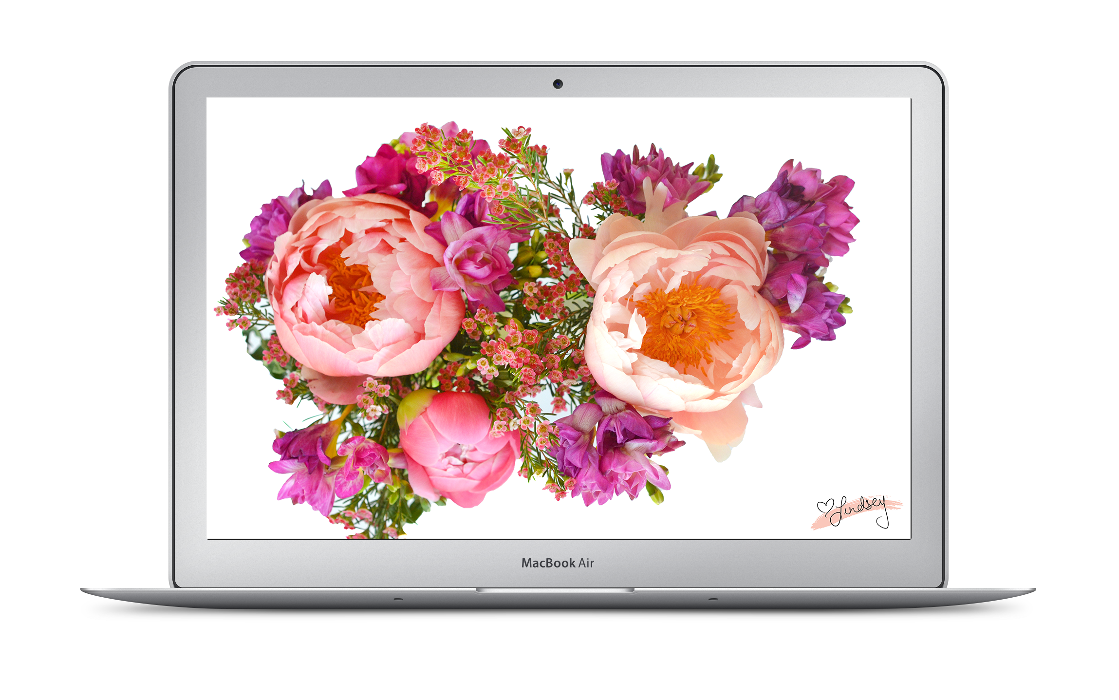 Laptop View | Lindsey Allen Designs