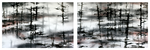 MIST charcoal, graphite, ink, pastel 20 h BY 60 w diptych.jpg
