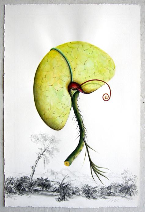 Artist: Vico Fabbris  Name: Auguillari Armatis
