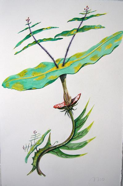 Artist: Vico Fabbris  Name: Laterais Escondido