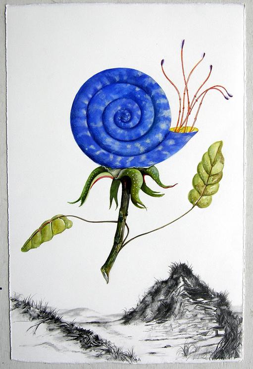 """Artist: Vico Fabbris  Name: Nautilustum  Dimensions: 22 1/2"""" x 30"""""""