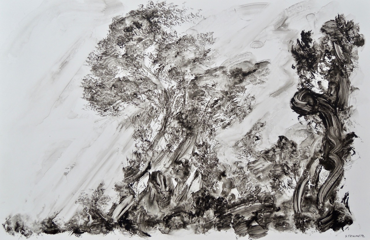 """Artist: Leon Steinmetz  Name: Imaginary Landscapes  Size: 18"""" x 23""""  Method: ink washes on archival acrylic sheet  Condition: original  Price:  Inquire"""