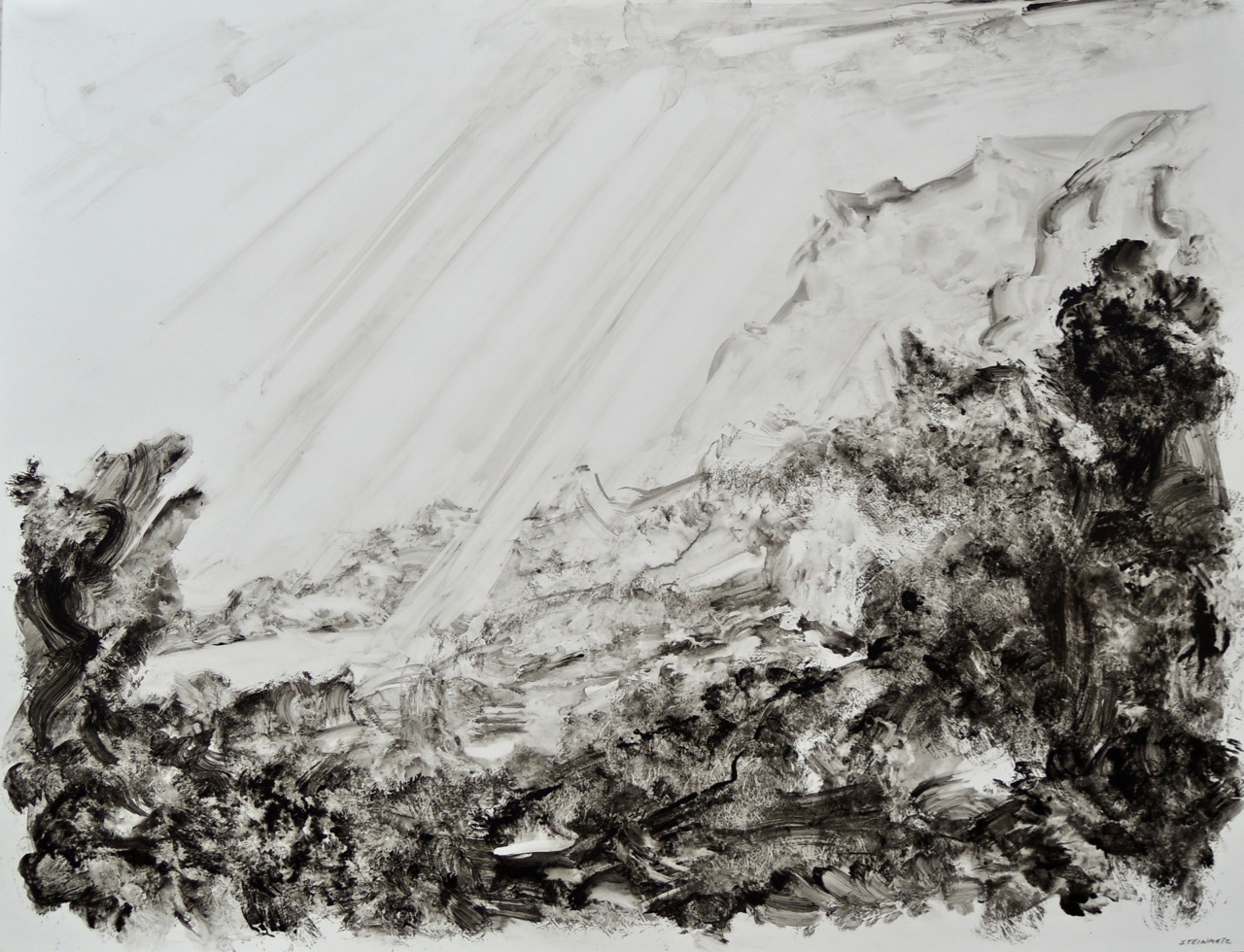 """Artist: Leon Steinmetz  Name: Imaginary Landscapes  Size: 13"""" x 20""""  Method: ink washes on archival acrylic sheet  Condition: original  Price:  Inquire"""