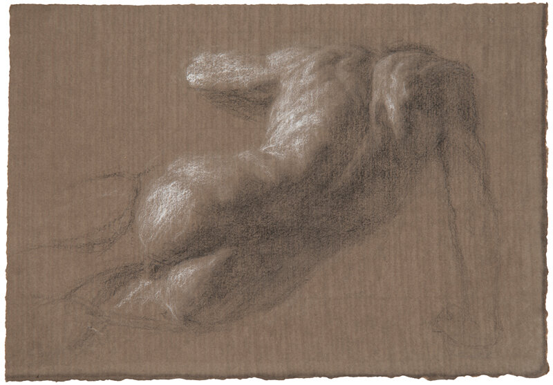 Artist: Wendy Artin  Title: Giuseppe's Back  Date: 2019  Size: 17x24  Method: Charcoal on brown paper  Price:  Inquire