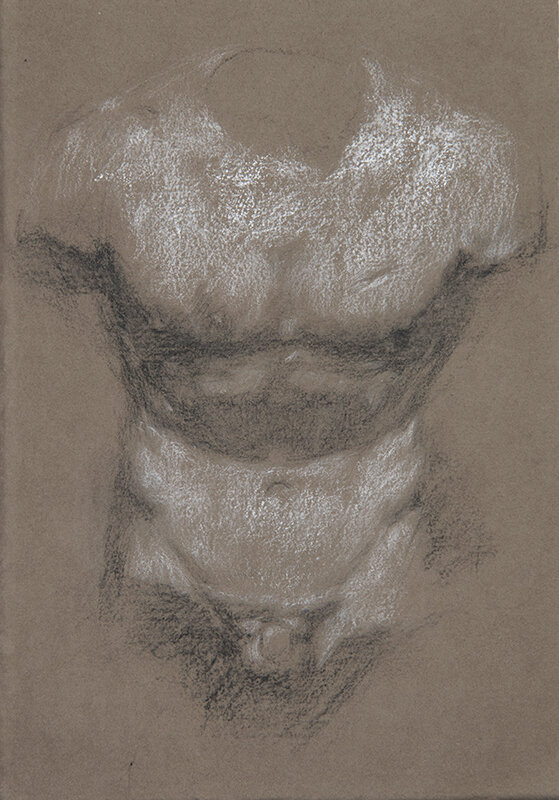 Artist: Wendy Artin  Title: Torso Massimo  Date: 2018  Size: 17x24  Method: Charcoal  Price:  Inquire