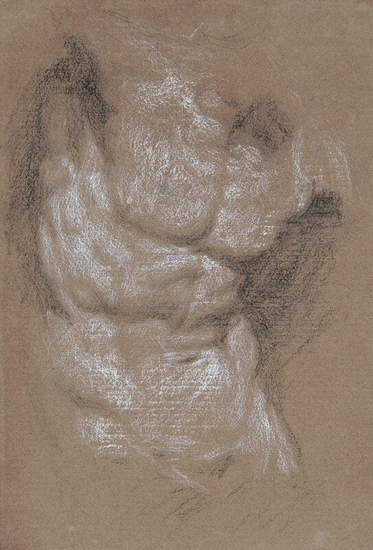 Artist: Wendy Artin  Title: Torso  Date: 2019  Size: 17x24  Method: Charcoal  Price:  Inquire