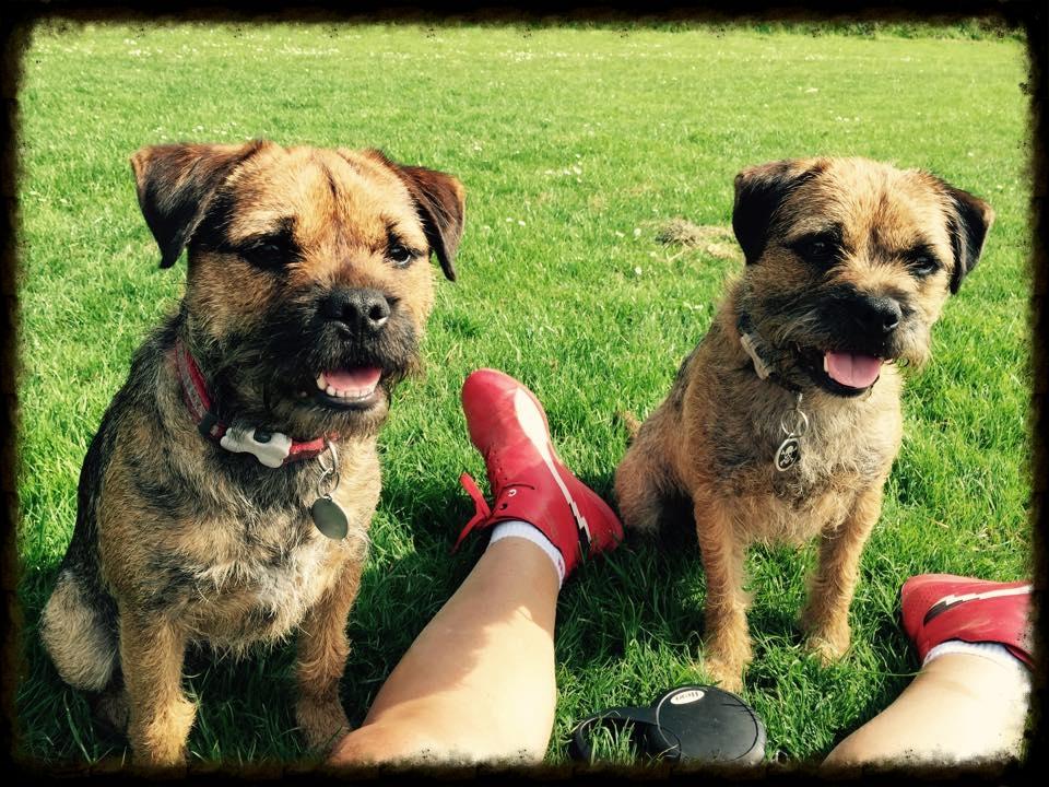 Archie & Harry