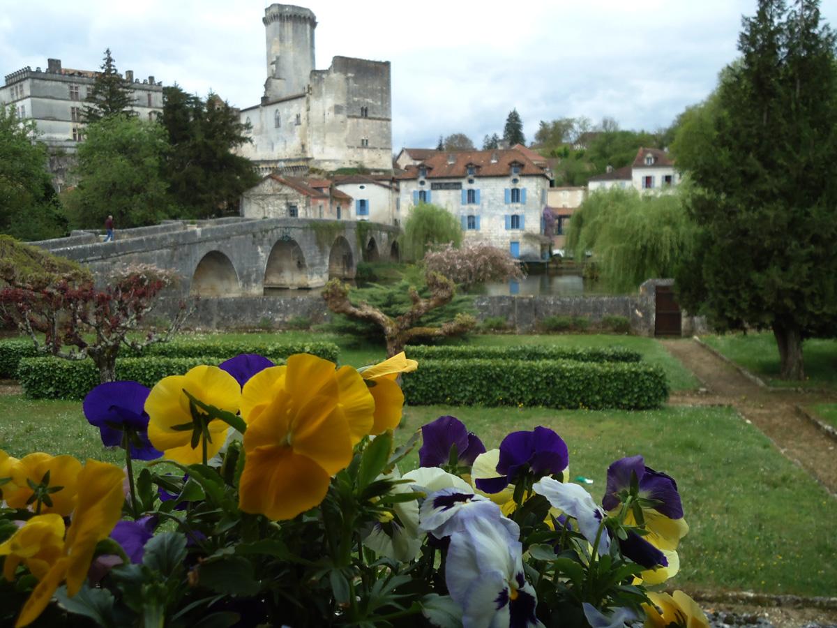 Bourdeilles Chateau, France pansies.jpg