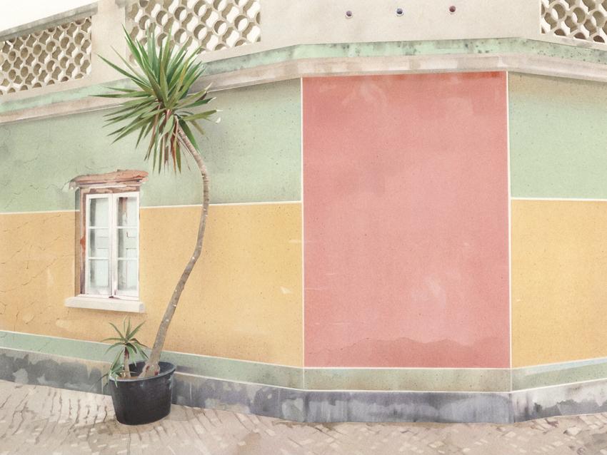 Street Palm.jpg