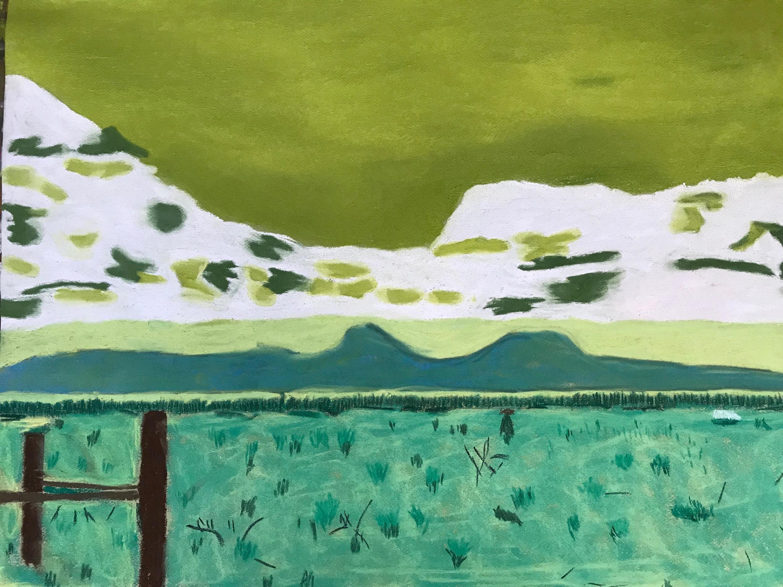 Lisa's pasture.jpg