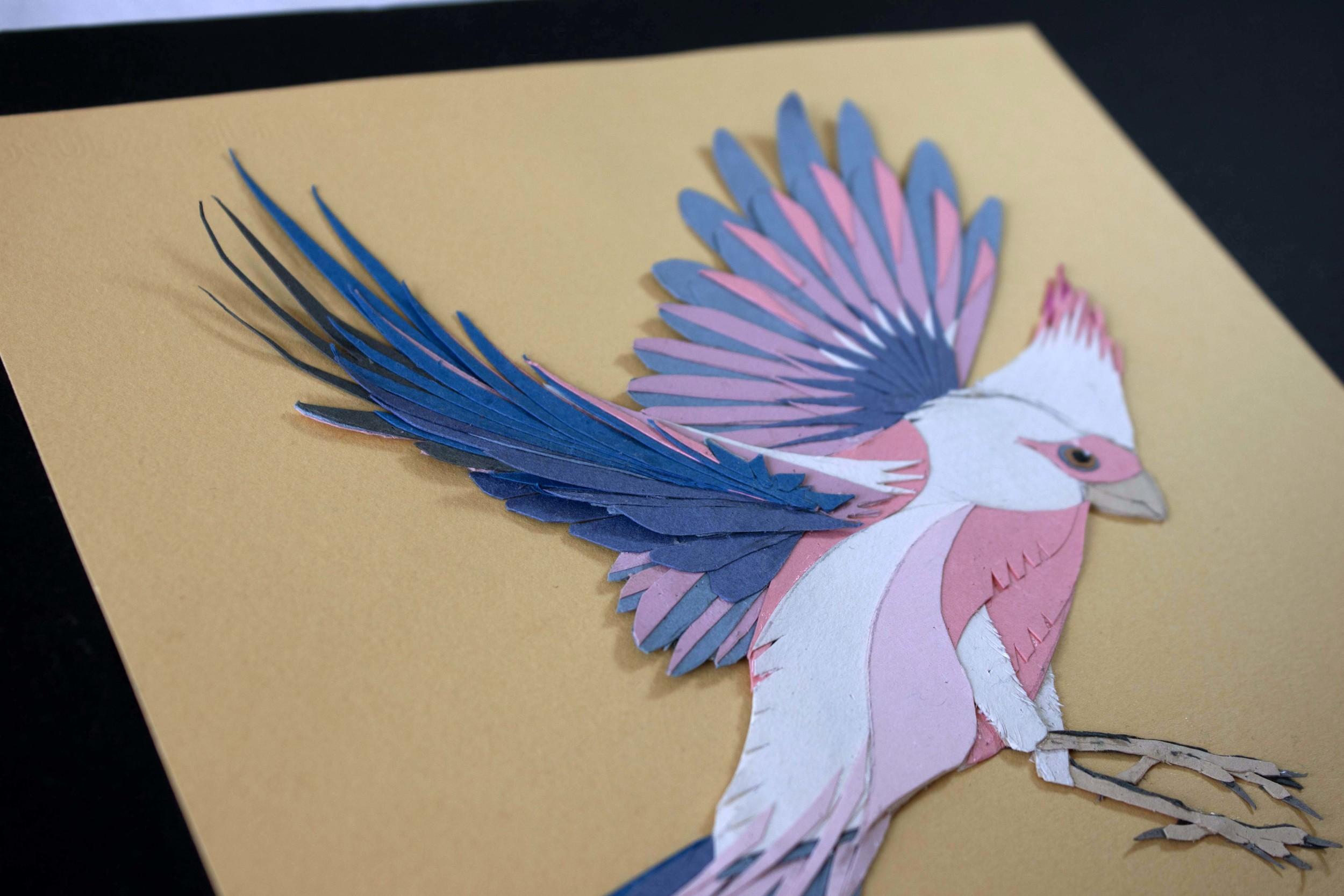 Detail of Pink and Grey Cardinal