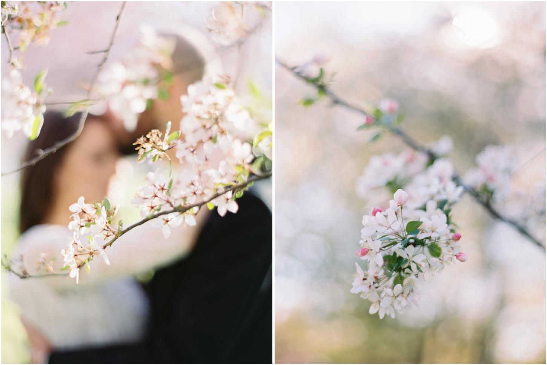 DC Cherry Blossom Wedding   Kristin Sweeting Photography