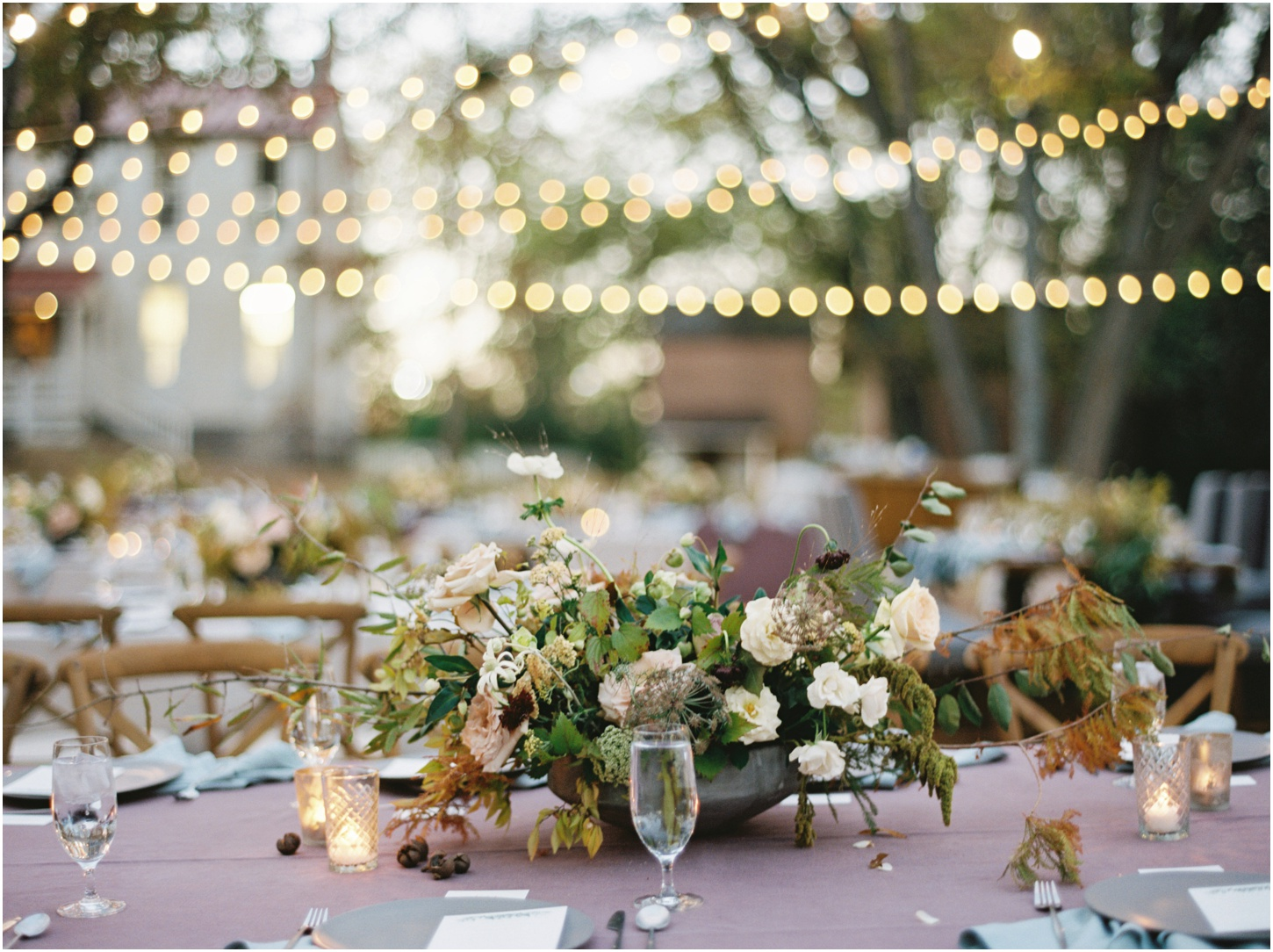 Twinkle light outdoor reception
