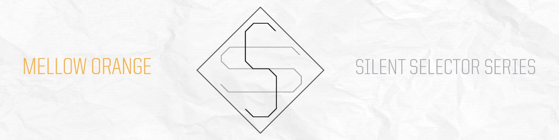 Silent Selector_FNL.jpg