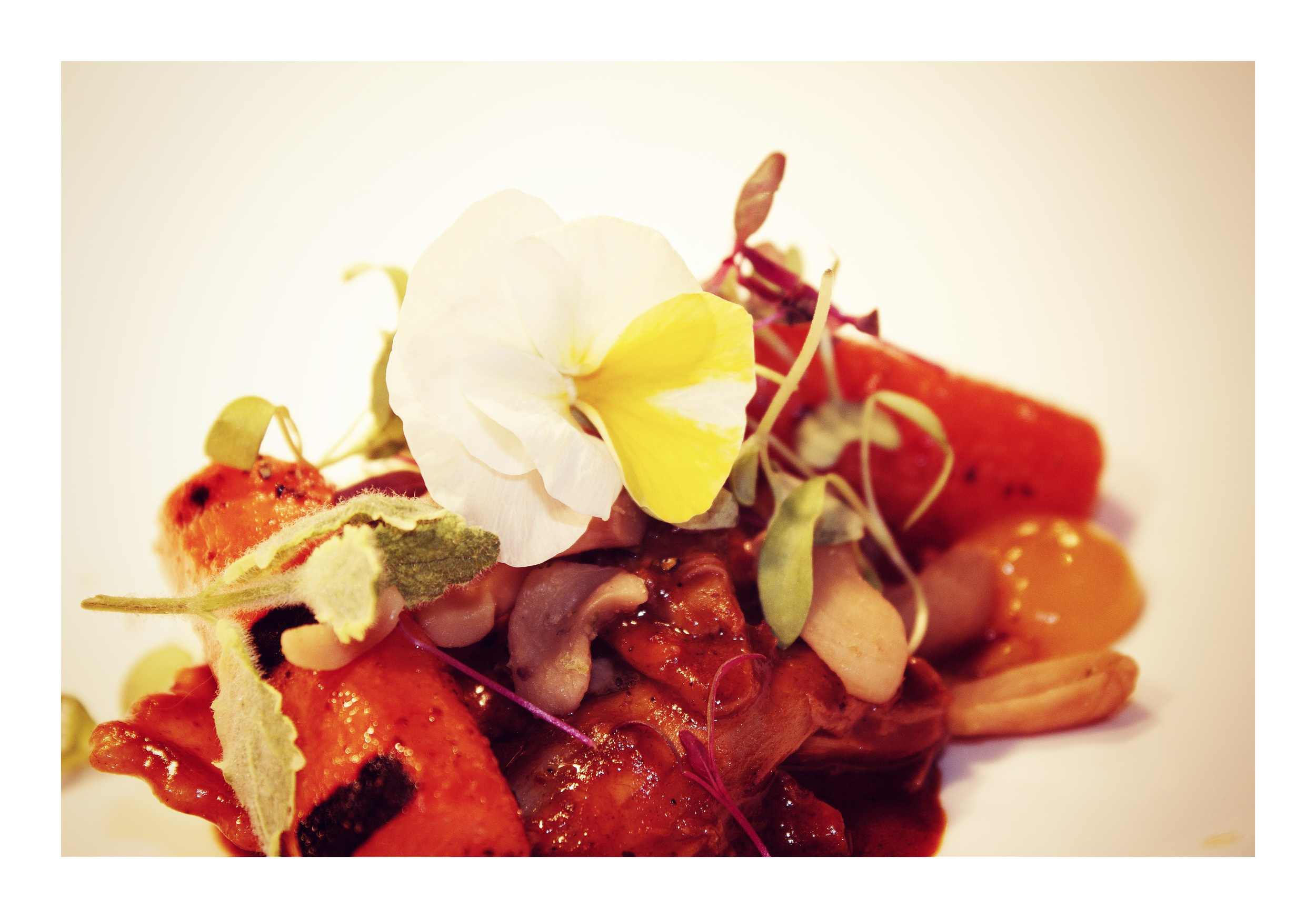 rabbit ravioli | chewy charred carrot | apricot jam | boiled cashew | pepper jam | violas | bbq butter
