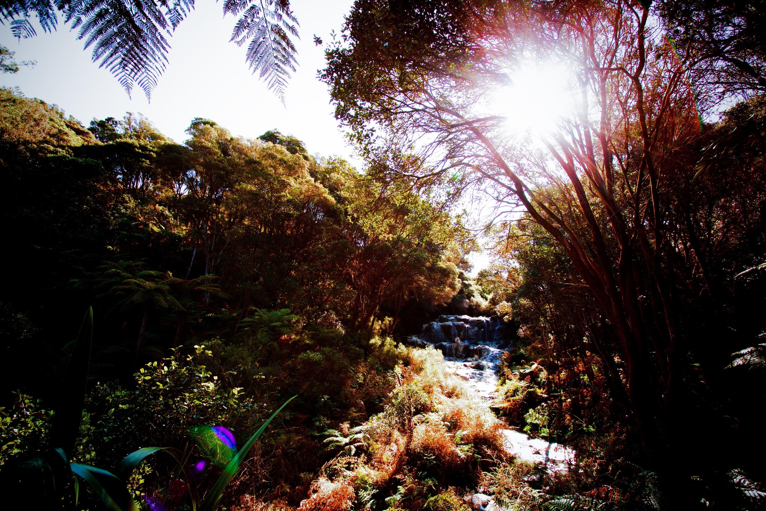 Kakahi Falls, Hells Gate Geothermal Park & Mud Spa
