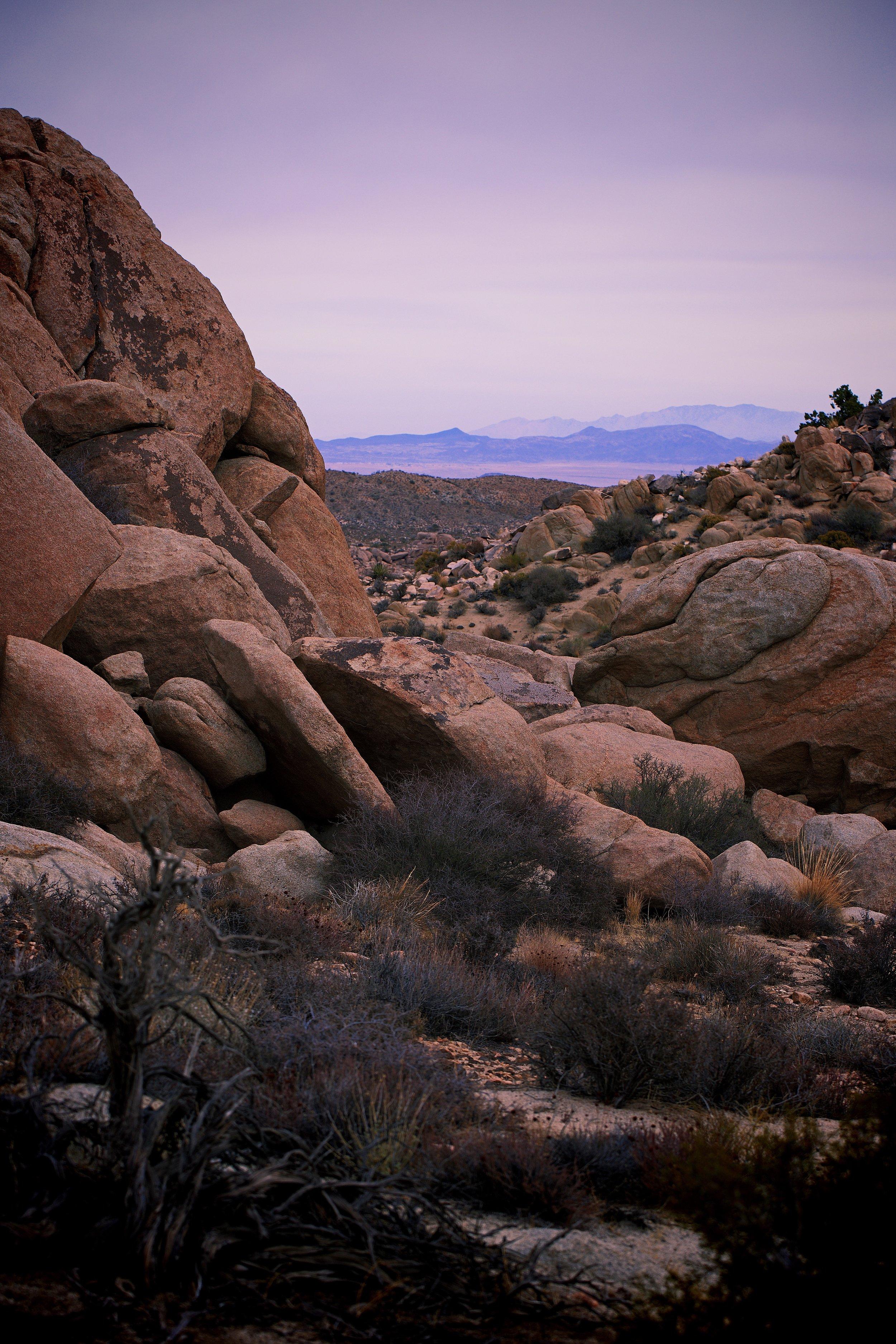 IMG_7320_x desert hike.jpg