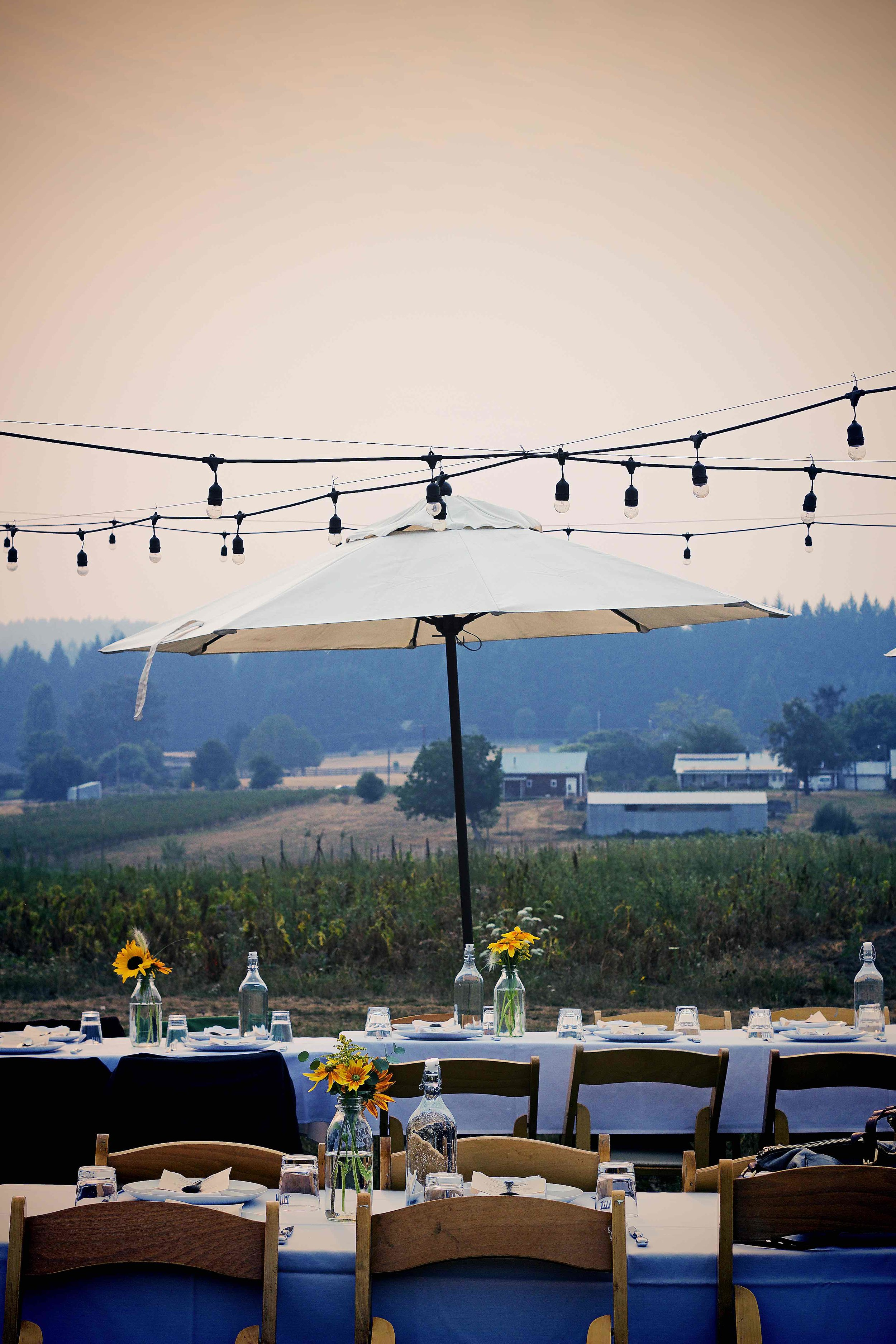 IMG_3691x Our Table_xx.jpg