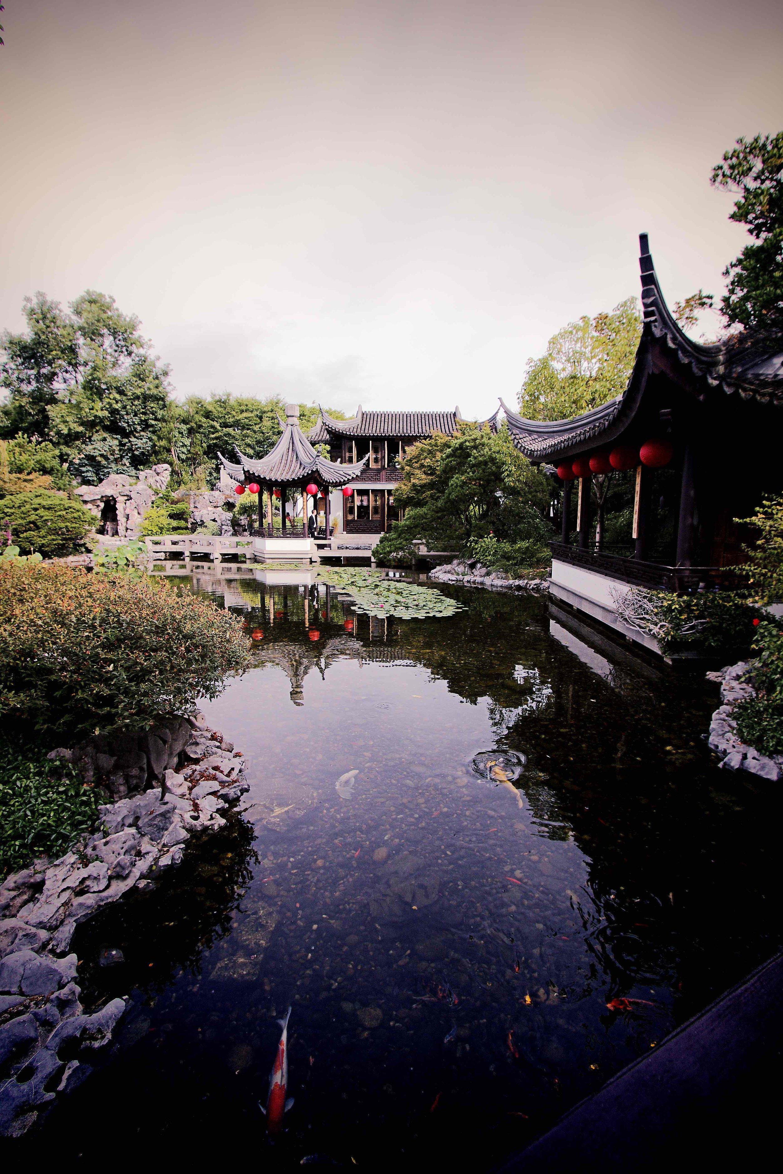 IMG_3818x Chinese Gardens_xx.jpg