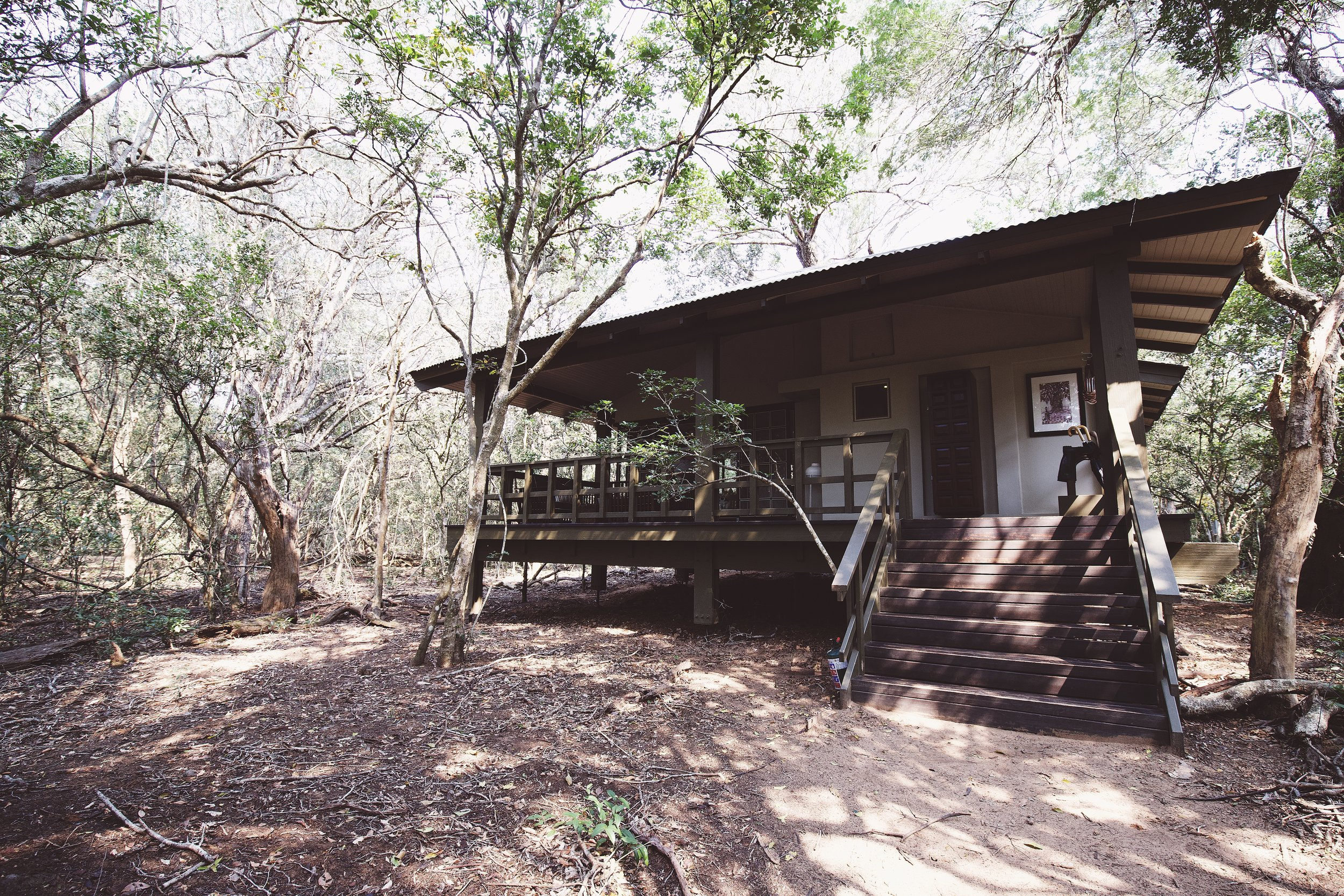 IMG_8690_8.23.18_our forest lodge exterior_x.jpg