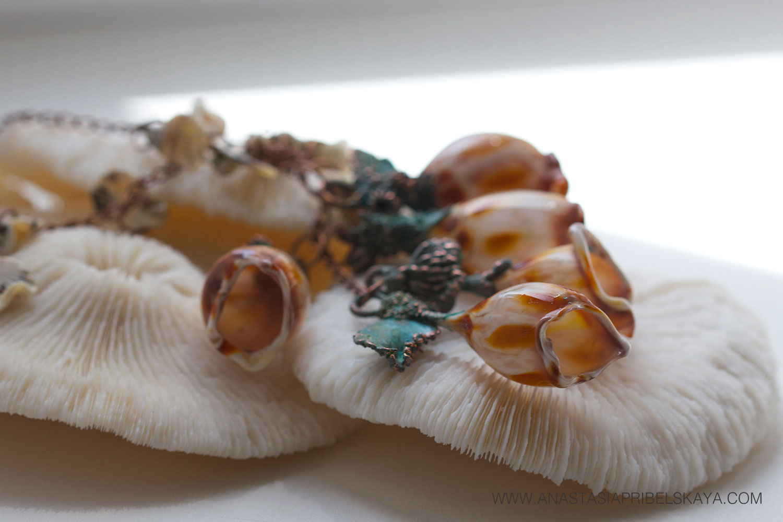 """""""Conus textile"""" by Anastasia Pribelskaya"""