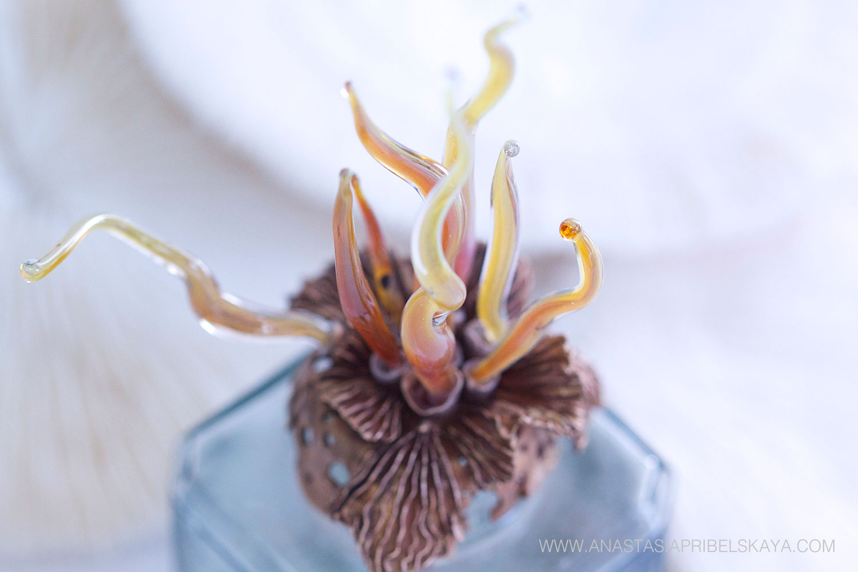 Aquatica inkwell by Anastasia Pribelskaya