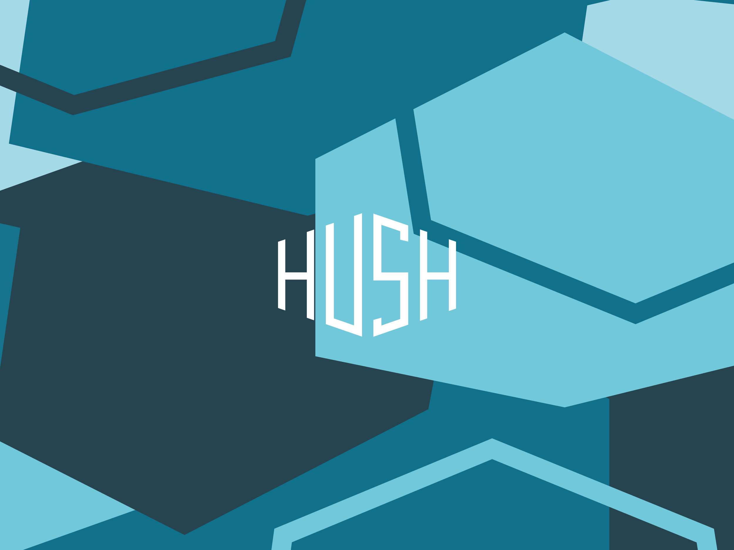HushBrandImages3.jpg