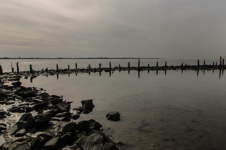 Dead Horse Bay (Heidi M. Nunnally)-39.jpg