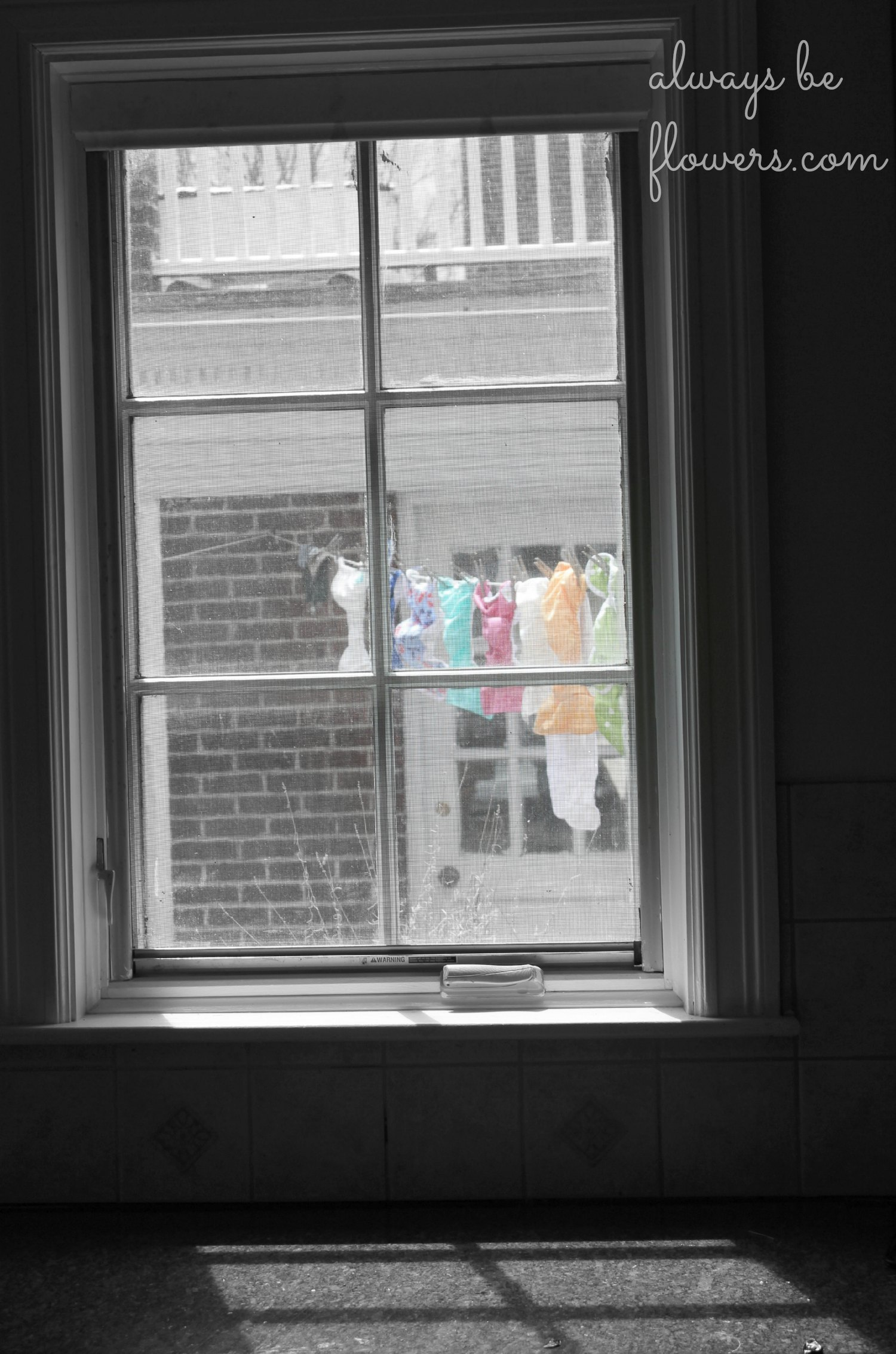 While cloth diapers hanging on the clothesline was a normal sight for my grandmother, I'm pretty sure she would find the fun colors frivolous.