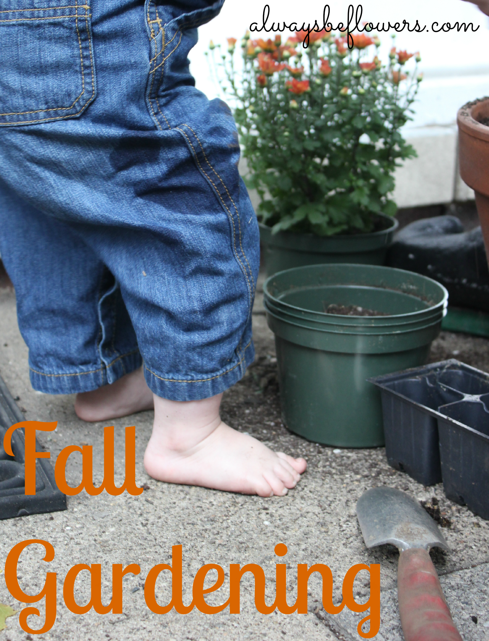 The start of fall gardening with toddler.png